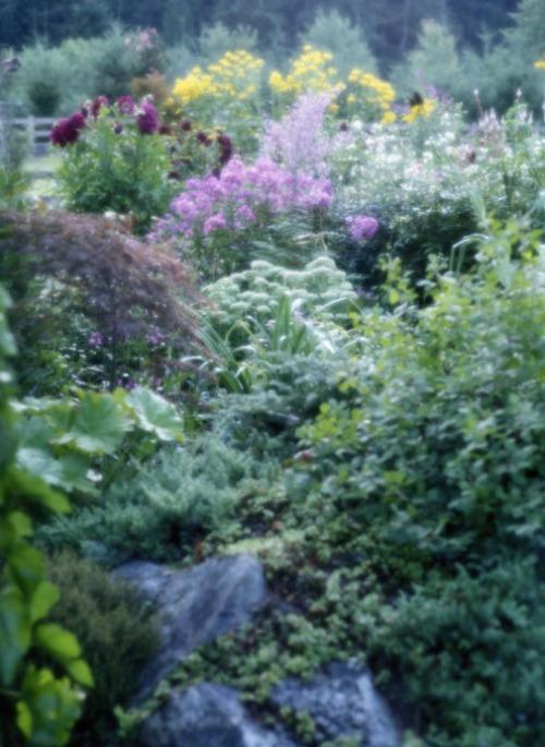 garden impression perfect